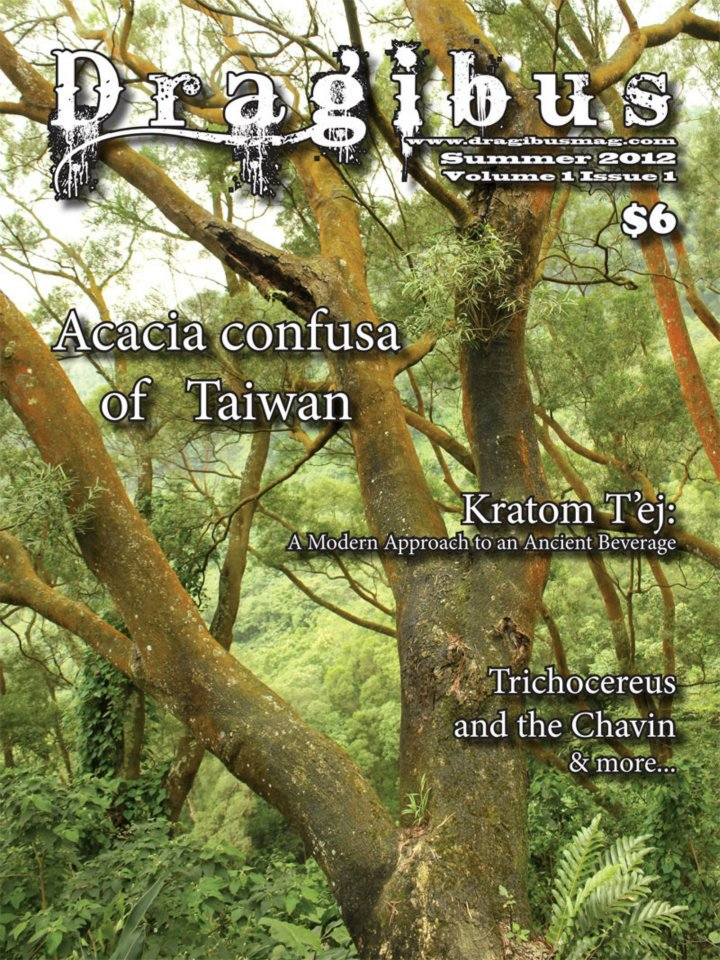 Dragibus Magazine -  Acacia confusa of Taiwan, Trichocereus and the Chavin, herbal beer recipe, and more.