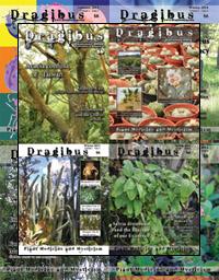 Dragibus Magazine - Volume 2