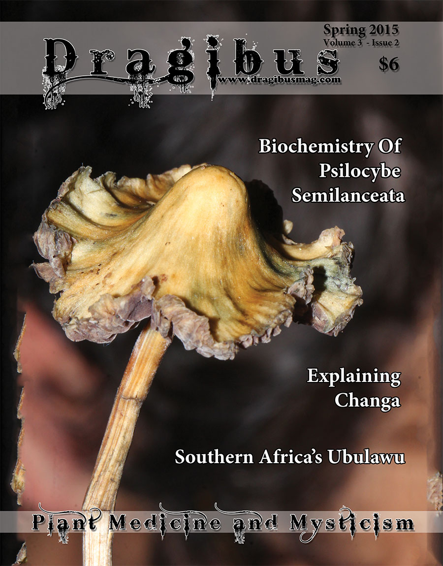 Dragibus Magazine - Volume 3 Issue 2