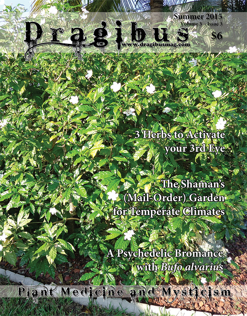 Dragibus Magazine - The Shamans (Mail-Order) Garden, 3 Herbs to Activate Your 3rd Eye, A Psychedelic Bromance with Bufo alvarius