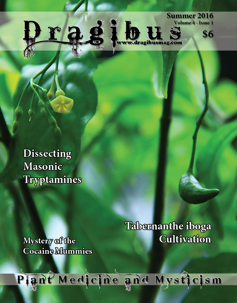 Dragibus Magazine - Iboga cultivation, Masonic Tryptimines, the Mystery of the Cocaine Mummies and more...